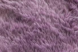 jersey city carpet pros of high pile carpet
