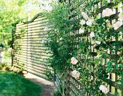 Image of: Planting Fence Design