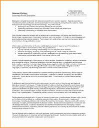 Summary For Resume Customer Service Resume Summary Paragraph Resume