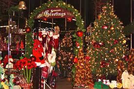 christmas tree shop coupons