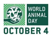 Image result for world animal welfare day