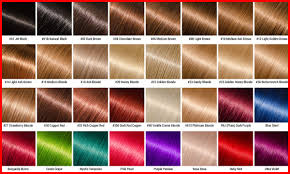 Ion Hair Dye Color Chart Ion Hair Color Chart Highlights Essentials Including Dye