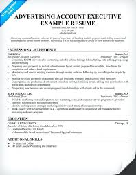 Advertising Account Executive Resume Custom Account Executive Sample Resume Account Executive Resume Free
