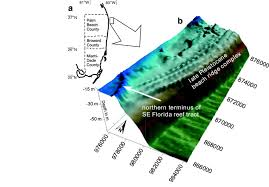 A The North End Of Known Holocene Reef Framework In Palm