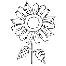 Free sunflower coloring page printable. 15 Beautiful Sunflower Coloring Pages For Your Little Girl