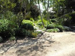 Small Picture Landscape Design Melbourne Sandra McMahon Gardenscape Design