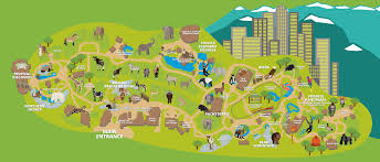 simple zoo map for kids. Unique Simple Denver Zoo Map In Simple For Kids T