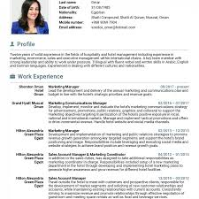 Resume Templates Sample For Sales And Marketing Director Career ...
