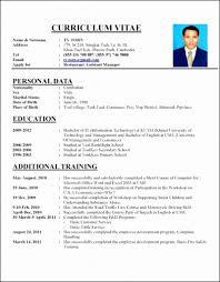 Cv Format Job Interview Proper Resume Examples Data Sample Of For