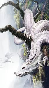 Dragon Wallpaper 245