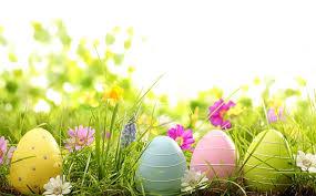 Easter Egg Hunt Background 8 Background Check All
