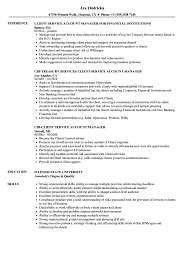 Client Service Account Manager Resume Samples Velvet Jobs