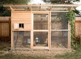 DIY Backyard Chickens  Poudre River Public Library District BlogBackyard Chicken Blog