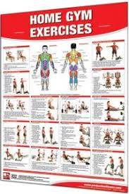 Impex Home Gym Exercise Chart Marcy Home Gym Exercise Chart