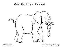 Small Picture African Elephant Coloring Pages Get Coloring Pages