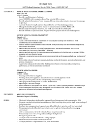 Merchandiser Resume Senior Merchandiser Resume Samples Velvet Jobs 2