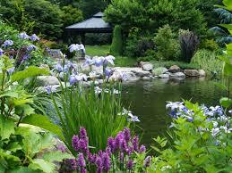 Pond Edges Design Tips For Building Ponds In Your Backyard Pond Landscaping