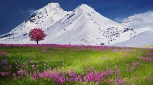 Beautiful Nature 1 Snow Mountains Landscape Beautiful Nature Landscapes
