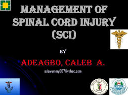 Sci Ppt Management Of Spinal Cord Injury