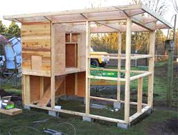 Strong safe chicken coop in Oregon