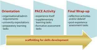 Assessment Strategies For New Learning   Springerlink
