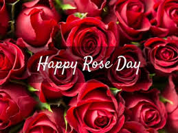 Happy Rose Day 2018 Wishes Love Quotes Smses Whatsapp Status