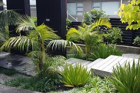 landscaping company auckland landscape