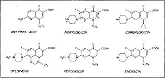 the fluoroquinolones mayo clinic