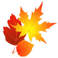 Image result for autumn leaves images