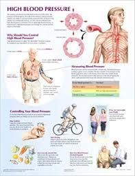 Blood Pressure Diagram High Blood Pressure Chart Netter Charts Frank H Netter Md