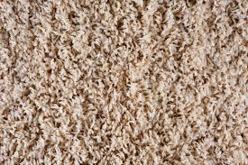 Frieze Carpet Waukesha Brookfield Milwaukee