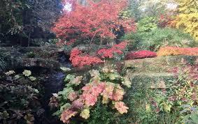 Small Picture Jobs to do in the November Garden Oxford Garden Design