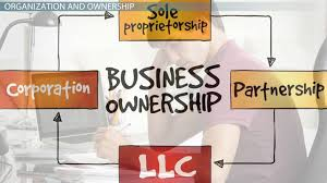 Organizational Structure Ownership Of A Business