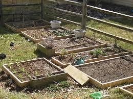 Vegetable Garden Raised Bed Soil Mix