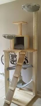 this fantastic cat tower has hammocks rs a private box and scratching surfaces