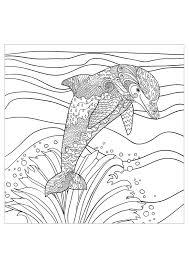 Delfini 18173 Delfini Disegni Da Colorare Per Adulti