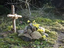 How To Bury A Pet At Home  CutenessDog Burial Backyard