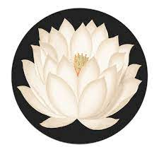 Round Placemats - White Lotus Compagnia ...