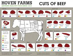 Cow Meat Cut Chart Hoven Farms Cuts Of Beef Chart Poster