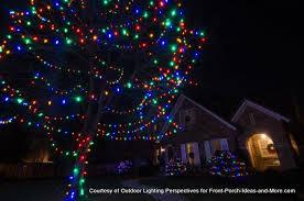 outdoor christmas lighting. Festive Christmas Lights On Tree And Shrubs Outdoor Lighting