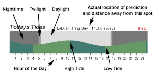Complete Tide Chart Ventura Ca San Onofre Tide Chart