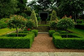box hedge parterre and york stone steps garden design and build