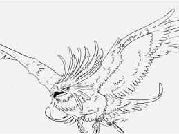 Drawings Of Phoenix Phoenix Coloring Pages Free New Phoenix Drawings In Pencil Yelomsite