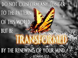 Do Not Conform To The Pattern Of This World Magnificent Decorating