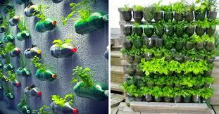 untitled design upcycled bottle garden