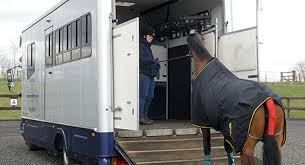equineinsurance from nfu mutual see our profile page for contact details horseboxinsurance horseinsurance horsebo liveryinsurancepic twitter com