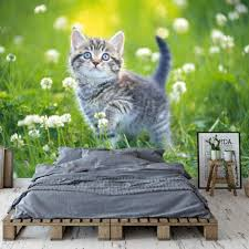ZDBWJJ Cute Cat Wallpaper Custom 3D ...