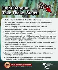 essay on dengue english essay dengue fever docx mosquito fever english essay dengue fever docx mosquito fever