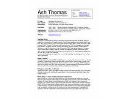 sample sap sd resume  it program manager resume  microsoft resume    sap abap resume samples