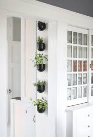 Herb Garden Kitchen Window Modern Kitchen Herb Garden Inspired By Charm